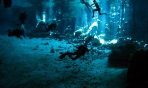 dosojos-00_resize_nurkowanie_aquamatic